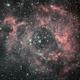 Rosette Bi-color Ha + L,                                Andrei Sava