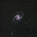 NGC 1365,                                Mark Sansom