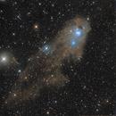 NGC 5367 (Chilescope contest),                                Jean-Baptiste Auroux