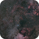 Cygnus,                                Christoph Nieswand