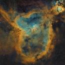Heart Nebula in SHO,                                Bill Long