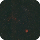 Monkeyhead Nebula, Jellyfish Nebula, and M35 at 85 mm in HOO,                                JDJ