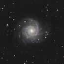 M74 whirly swirly,                                Astrobagel