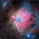 M-42 (Orion Nebula),                                Randal Healey