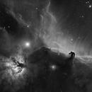 Horse & Flame Nebula in Ha-B&W (IC 434 region),                                pete_xl