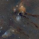 Antares region featuring the Blue Horsehead,                                Brian Boyle