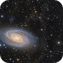 M81 and M82 HD,                                Paddy Gilliland