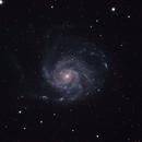 M101,                                HappySkies
