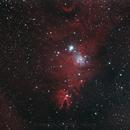 NGC 2264 Konusnebel - Cone Nebula,                                Michael Hoppe
