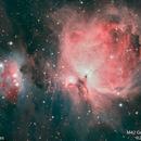 M42 Orion Nebula #15,                                Molly Wakeling