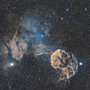 The Jellyfish Nebula,                                Sendhil Chinnasamy