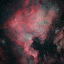 NGC7000 with NikonZ7,                                Georg N. Nyman