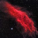 NGC 1499 - California Nebula,                                CrestwoodSky