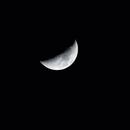 Winter Moon,                                StarSurfer Carl