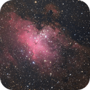 M16,                                peter_4059