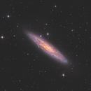 NGC 253 - The Sculptor Galaxy,                                Matthew Sole
