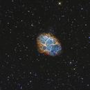 M1 - The Crab nebula in Narrowband,                                Sara Wager