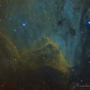 Pelican Nebula,                                Camille COLOMB