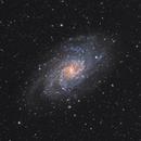 M33 LRGB,                                LAMAGAT Frederic