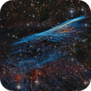 NGC 2736 - The Pencil Nebula (aka Herschel's Ray),                                Frank Breslawski