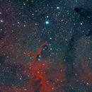 IC 1396 Elephant's Trunk Nebula,                                John Richards