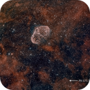 Crescent Nebula (NGC 6888) and PN G75.5+1.7,                                HaSeSky
