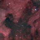 NGC7000 North America Nebula,                                Trevor Gunderson