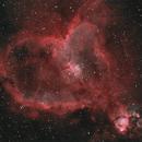 Heart Nebula,                                Charles Ward