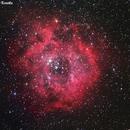 NGC2237 Nebulosa Rosetta,                                Fernando De Ronzo