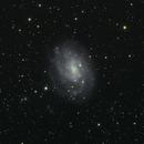 NGC 300,                                Uri Abraham
