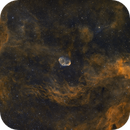 Season start, NGC6888 surroundings in Bi-Color,                                Erik Guneriussen