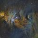NGC2264, The Cone Nebula,                                Jay Hall