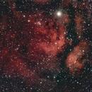 NGC6910,                                Stefano Zamblera