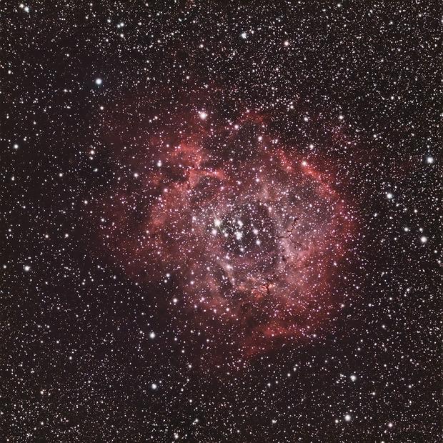 C50 Rosette Nebula,                                Rob Calfee
