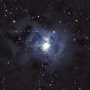 NGC 7023 - Iris Nebula,                                Michael Donaldson