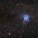 Iris Nebula (NGC 7023),                                Marco Rapino