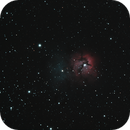 Trifid Nebula,                                Christopher Schem...