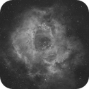 Rosette nebula in narrowband,                                Tom's Pics