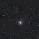 Iris Nebula NGC 7023,                                Dani Berkvens