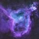 The Heart Nebula,                                Sinan Arkin