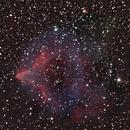 IC 63 in Cassiopeia,                                Bob Scott