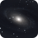 M81,                                Darktytanus