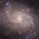 M33 - Triangulum Galaxy (from Asiago),                                Jan Beckmann