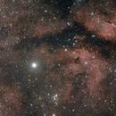 Sadr and IC1318,                                Hugues Obolonsky