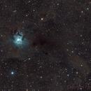 NGC7023,                                Federico Bossi
