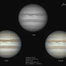 Jupiter - 2016/02/05,                                Baron