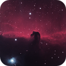 Horsehead Closeup,                                James Muehlner