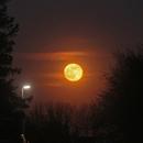 Romantic Moonrise on 27th April 2021,                                Henning Schmidt