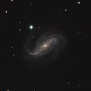 NGC 613,                                Gary Imm