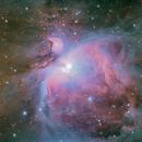 Great Orion Nebula - RASA 11,                                Andrew Marjama